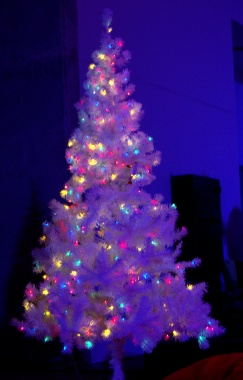 . . . as does a Christmas tree.